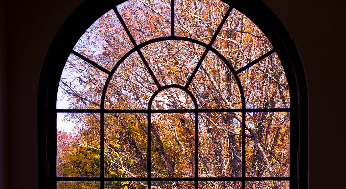 view of the trees through Melrose Hall window